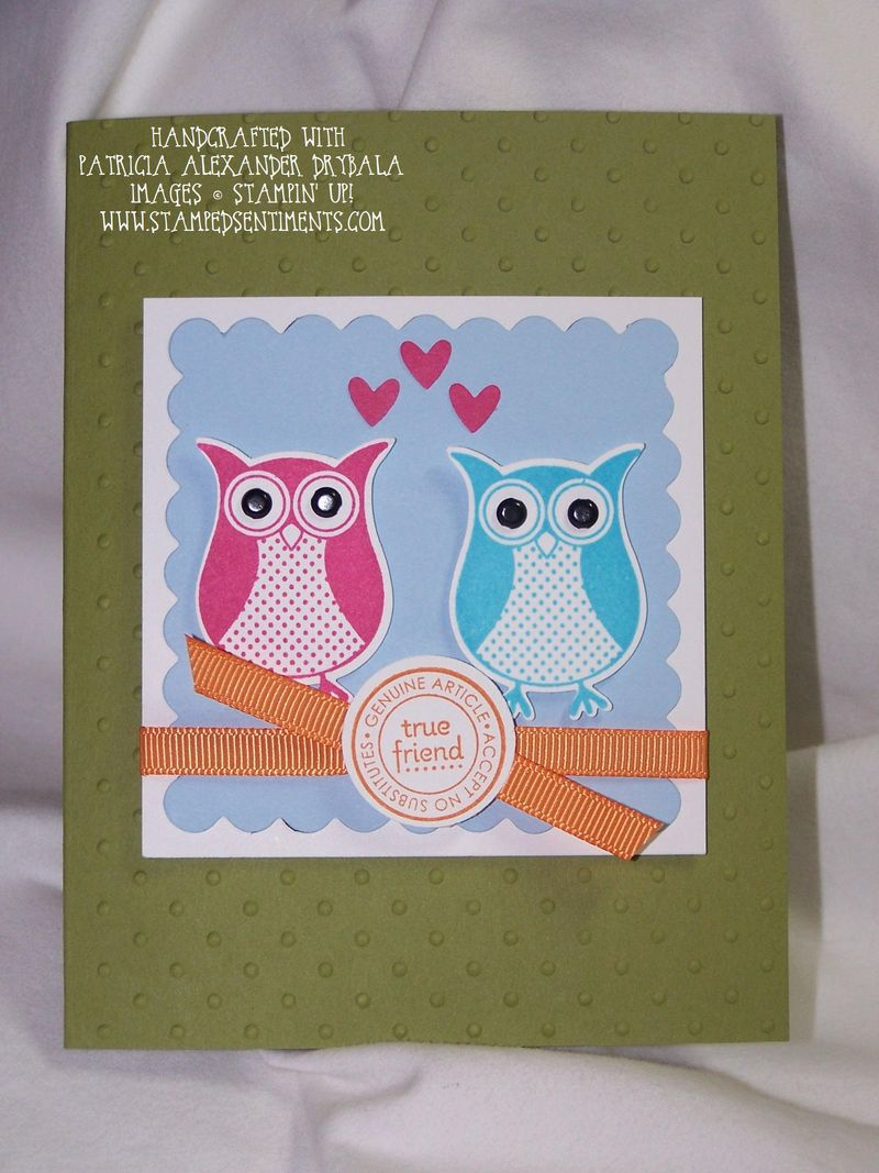 Punch_bunch_owls_pad