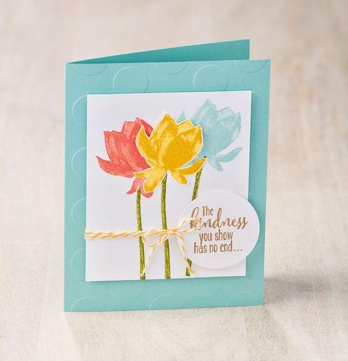 Lotus_blossom_su_01272015