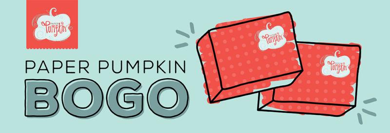 08112016_paper_pumpkin_bogo
